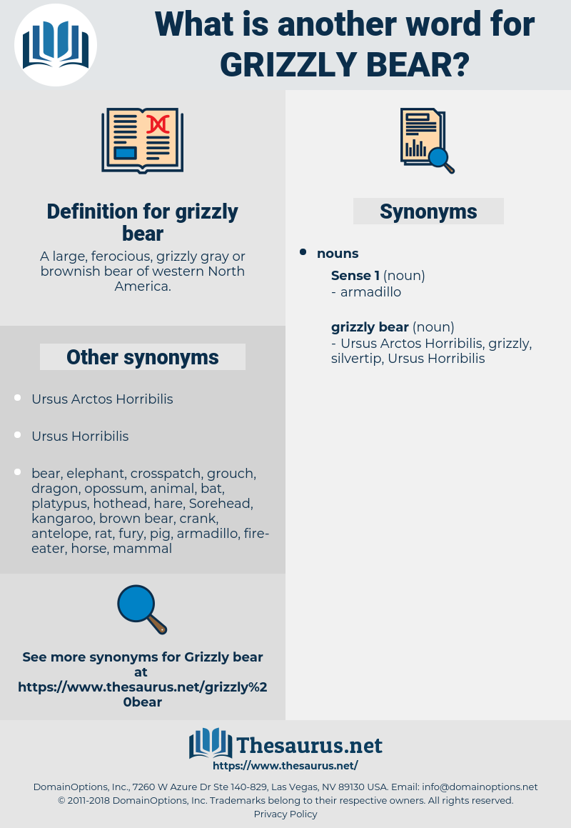 grizzly bear, synonym grizzly bear, another word for grizzly bear, words like grizzly bear, thesaurus grizzly bear