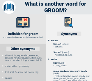 groom, synonym groom, another word for groom, words like groom, thesaurus groom