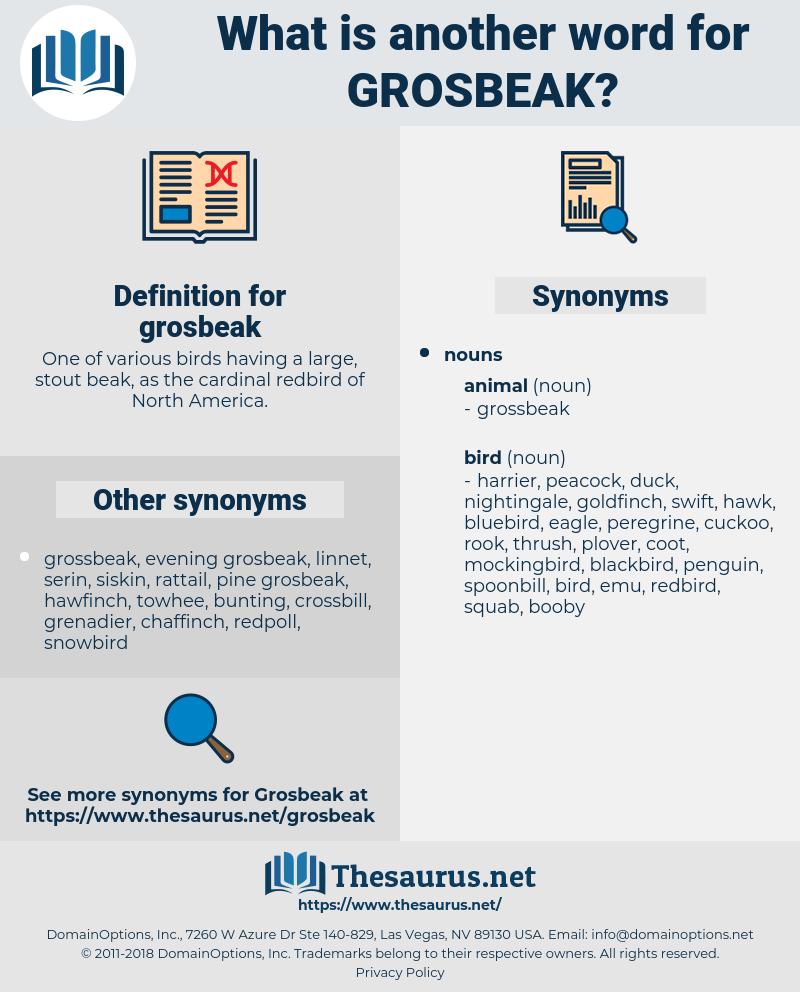 grosbeak, synonym grosbeak, another word for grosbeak, words like grosbeak, thesaurus grosbeak