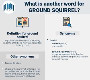 ground squirrel, synonym ground squirrel, another word for ground squirrel, words like ground squirrel, thesaurus ground squirrel