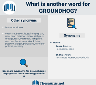 groundhog, synonym groundhog, another word for groundhog, words like groundhog, thesaurus groundhog