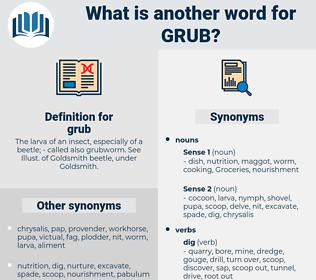 grub, synonym grub, another word for grub, words like grub, thesaurus grub