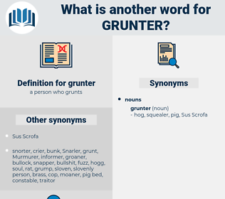 grunter, synonym grunter, another word for grunter, words like grunter, thesaurus grunter