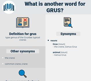 grus, synonym grus, another word for grus, words like grus, thesaurus grus