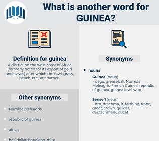 guinea, synonym guinea, another word for guinea, words like guinea, thesaurus guinea