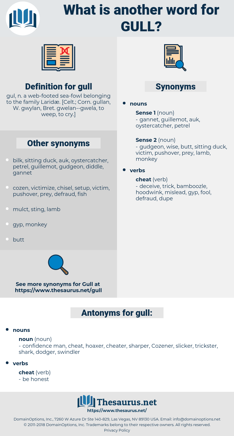 gull, synonym gull, another word for gull, words like gull, thesaurus gull