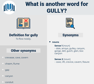 gully, synonym gully, another word for gully, words like gully, thesaurus gully