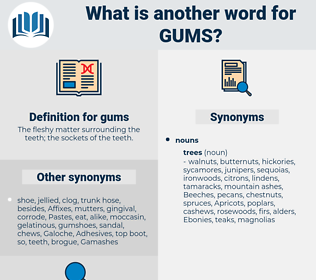 gums, synonym gums, another word for gums, words like gums, thesaurus gums