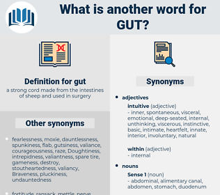 gut, synonym gut, another word for gut, words like gut, thesaurus gut