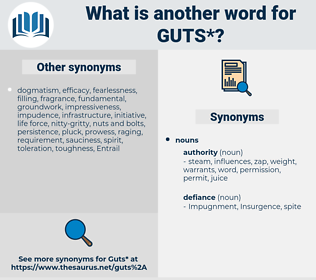 guts, synonym guts, another word for guts, words like guts, thesaurus guts
