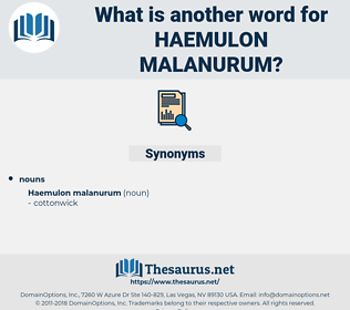 Haemulon Malanurum, synonym Haemulon Malanurum, another word for Haemulon Malanurum, words like Haemulon Malanurum, thesaurus Haemulon Malanurum