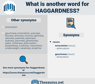 haggardness, synonym haggardness, another word for haggardness, words like haggardness, thesaurus haggardness