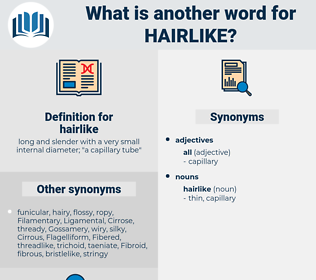 hairlike, synonym hairlike, another word for hairlike, words like hairlike, thesaurus hairlike