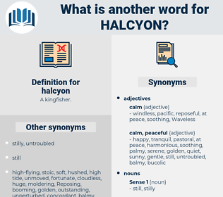 halcyon, synonym halcyon, another word for halcyon, words like halcyon, thesaurus halcyon