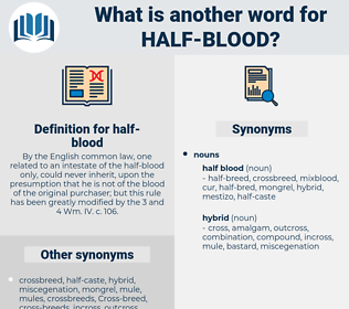 half blood, synonym half blood, another word for half blood, words like half blood, thesaurus half blood