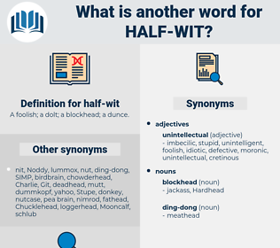 half-wit, synonym half-wit, another word for half-wit, words like half-wit, thesaurus half-wit