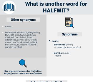 halfwit, synonym halfwit, another word for halfwit, words like halfwit, thesaurus halfwit