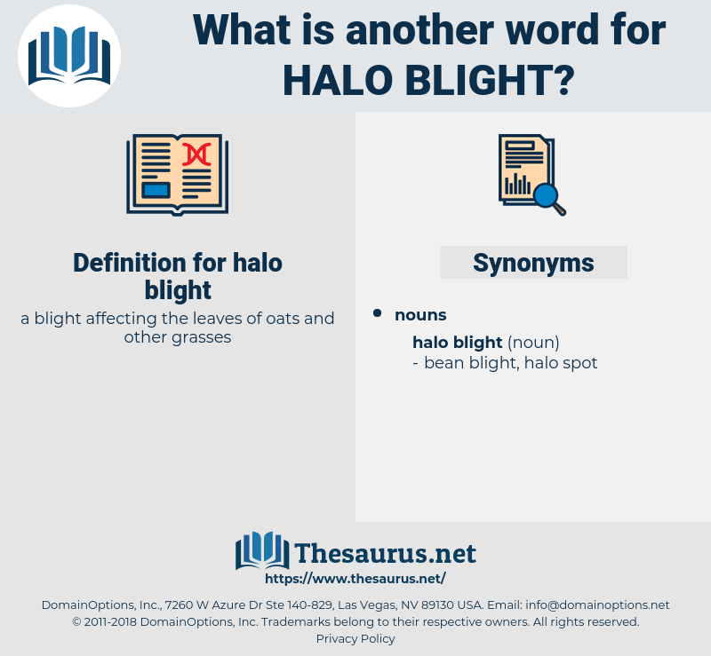 halo blight, synonym halo blight, another word for halo blight, words like halo blight, thesaurus halo blight