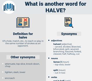 halve, synonym halve, another word for halve, words like halve, thesaurus halve