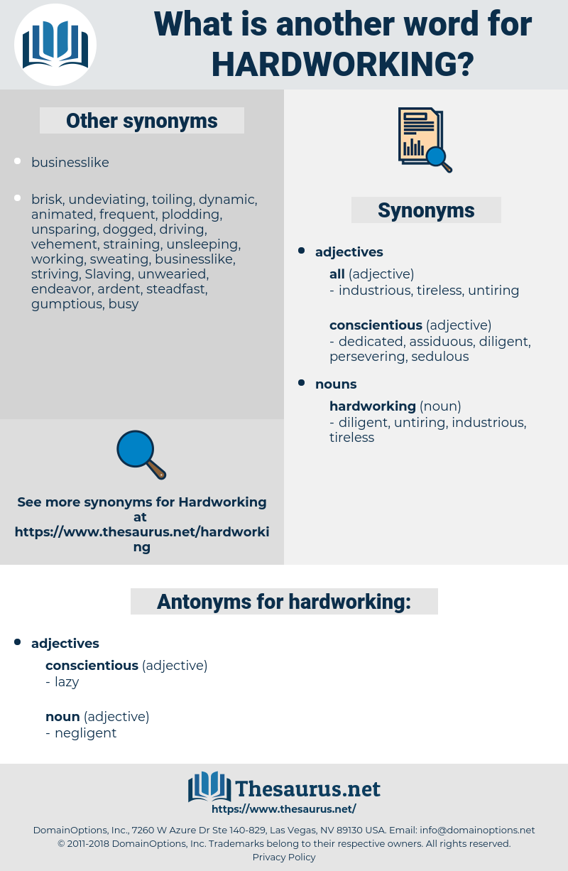 Synonyms For Hardworking Antonyms For Hardworking Thesaurus Net