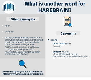 harebrain, synonym harebrain, another word for harebrain, words like harebrain, thesaurus harebrain