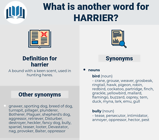 harrier, synonym harrier, another word for harrier, words like harrier, thesaurus harrier