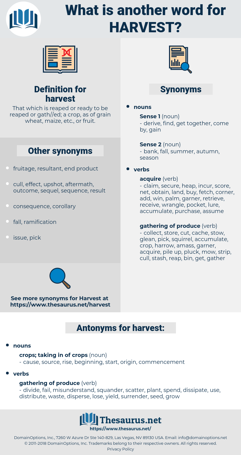 harvest, synonym harvest, another word for harvest, words like harvest, thesaurus harvest