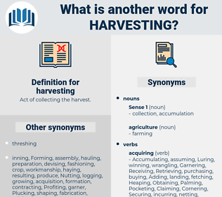 harvesting, synonym harvesting, another word for harvesting, words like harvesting, thesaurus harvesting