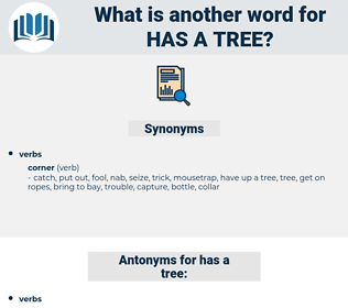 has a tree, synonym has a tree, another word for has a tree, words like has a tree, thesaurus has a tree