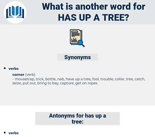 has up a tree, synonym has up a tree, another word for has up a tree, words like has up a tree, thesaurus has up a tree