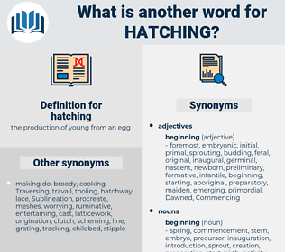hatching, synonym hatching, another word for hatching, words like hatching, thesaurus hatching