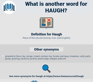 Haugh, synonym Haugh, another word for Haugh, words like Haugh, thesaurus Haugh