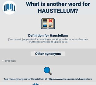 Haustellum, synonym Haustellum, another word for Haustellum, words like Haustellum, thesaurus Haustellum