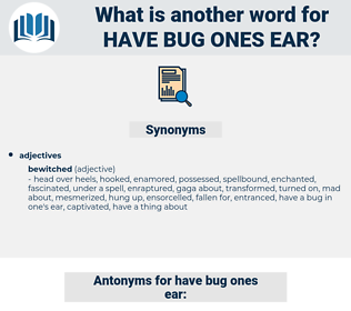 have bug ones ear, synonym have bug ones ear, another word for have bug ones ear, words like have bug ones ear, thesaurus have bug ones ear