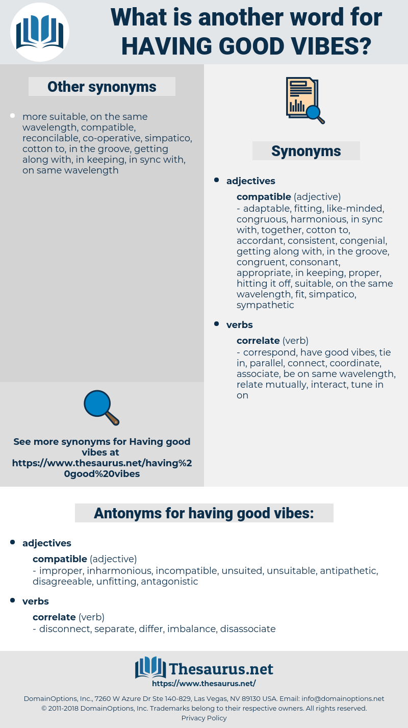 Synonyms for HAVING GOOD VIBES   Thesaurus.net
