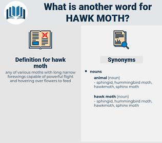 hawk moth, synonym hawk moth, another word for hawk moth, words like hawk moth, thesaurus hawk moth