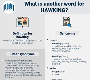 hawking, synonym hawking, another word for hawking, words like hawking, thesaurus hawking