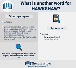 hawkshaw, synonym hawkshaw, another word for hawkshaw, words like hawkshaw, thesaurus hawkshaw