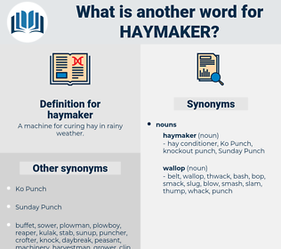 haymaker, synonym haymaker, another word for haymaker, words like haymaker, thesaurus haymaker