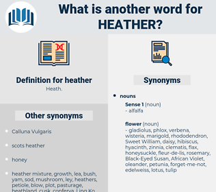 heather, synonym heather, another word for heather, words like heather, thesaurus heather