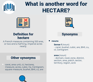 hectare, synonym hectare, another word for hectare, words like hectare, thesaurus hectare