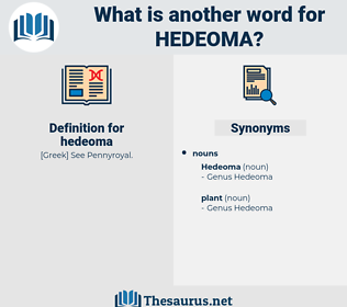 hedeoma, synonym hedeoma, another word for hedeoma, words like hedeoma, thesaurus hedeoma