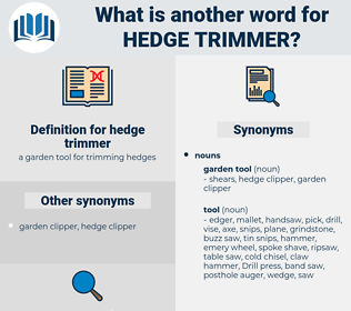 hedge trimmer, synonym hedge trimmer, another word for hedge trimmer, words like hedge trimmer, thesaurus hedge trimmer