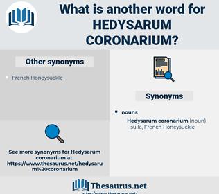 Hedysarum Coronarium, synonym Hedysarum Coronarium, another word for Hedysarum Coronarium, words like Hedysarum Coronarium, thesaurus Hedysarum Coronarium