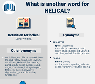 helical, synonym helical, another word for helical, words like helical, thesaurus helical