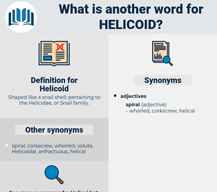 Helicoid, synonym Helicoid, another word for Helicoid, words like Helicoid, thesaurus Helicoid