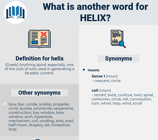 helix, synonym helix, another word for helix, words like helix, thesaurus helix