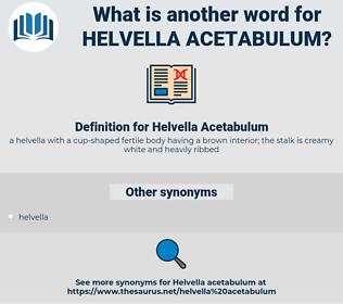Helvella Acetabulum, synonym Helvella Acetabulum, another word for Helvella Acetabulum, words like Helvella Acetabulum, thesaurus Helvella Acetabulum