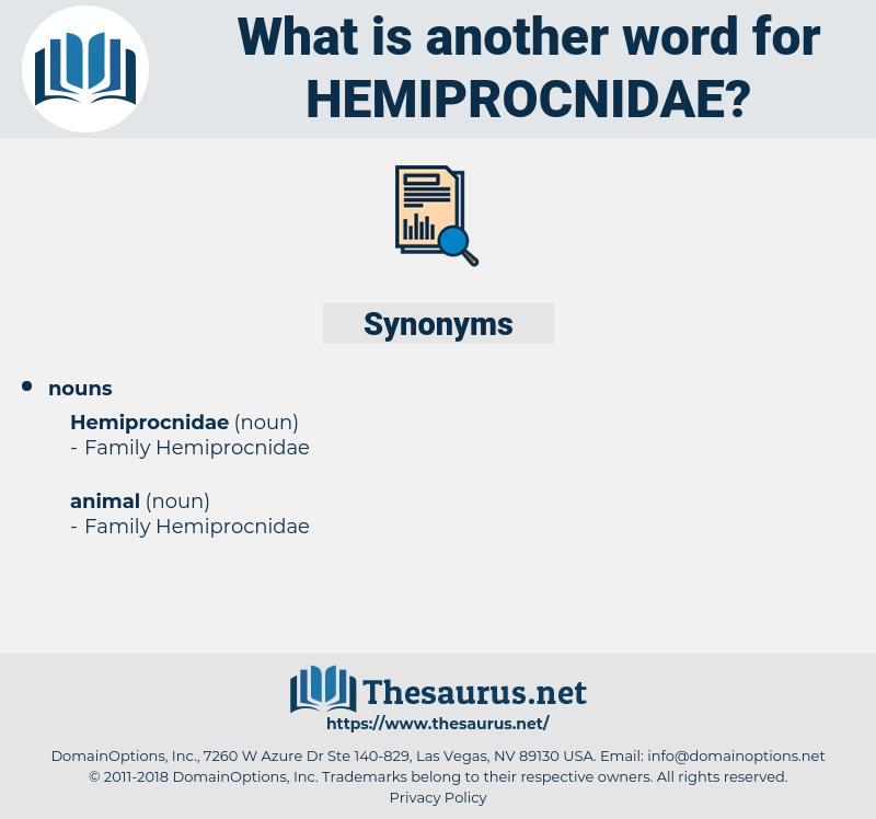 hemiprocnidae, synonym hemiprocnidae, another word for hemiprocnidae, words like hemiprocnidae, thesaurus hemiprocnidae