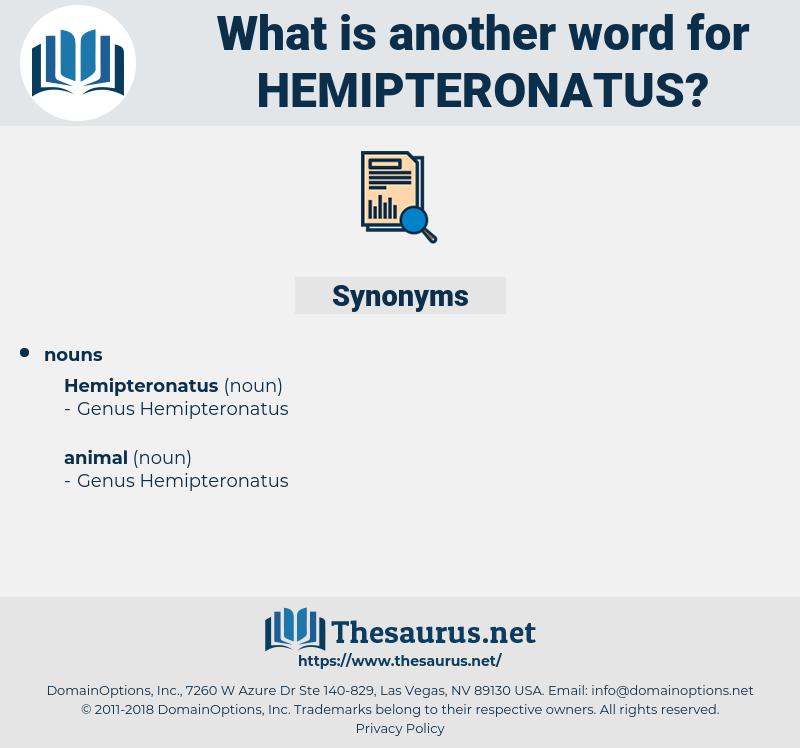hemipteronatus, synonym hemipteronatus, another word for hemipteronatus, words like hemipteronatus, thesaurus hemipteronatus